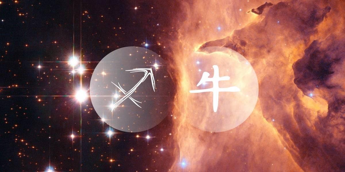 Sagittarius Ox