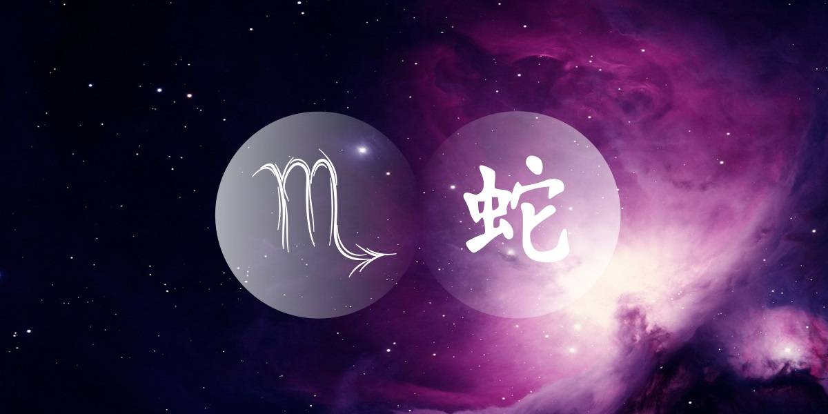 Scorpio Snake: The Comfortable Sceptic Of The Chinese Western Zodiac