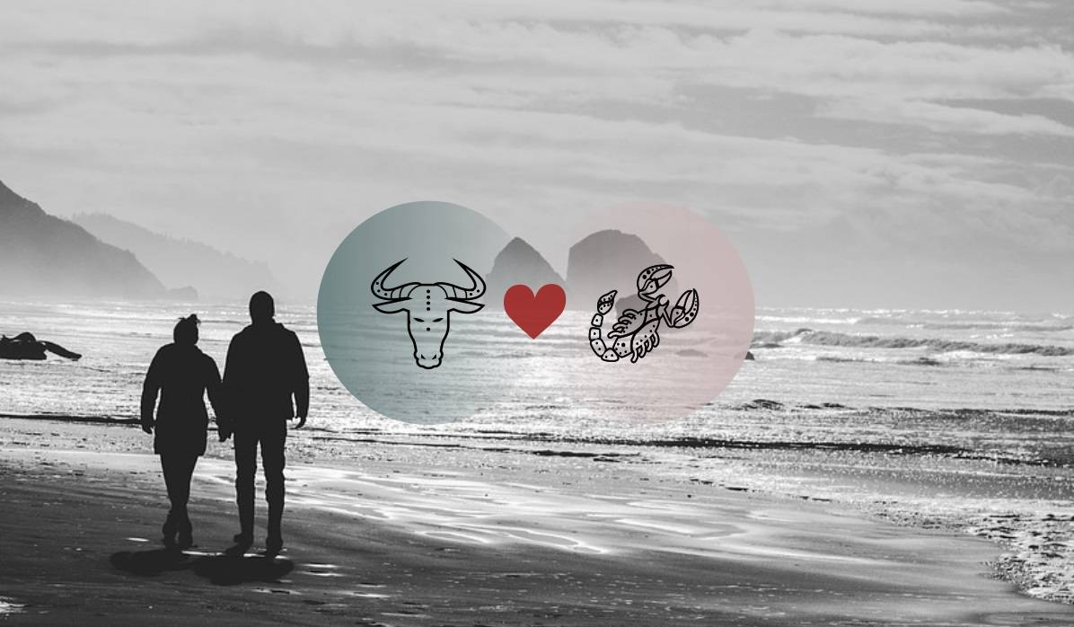 Taurus And Scorpio Compatibility In Love, Relationship And Sex
