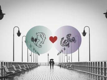 Scorpio Virgo Love Compatibility Relation facts Virgo love
