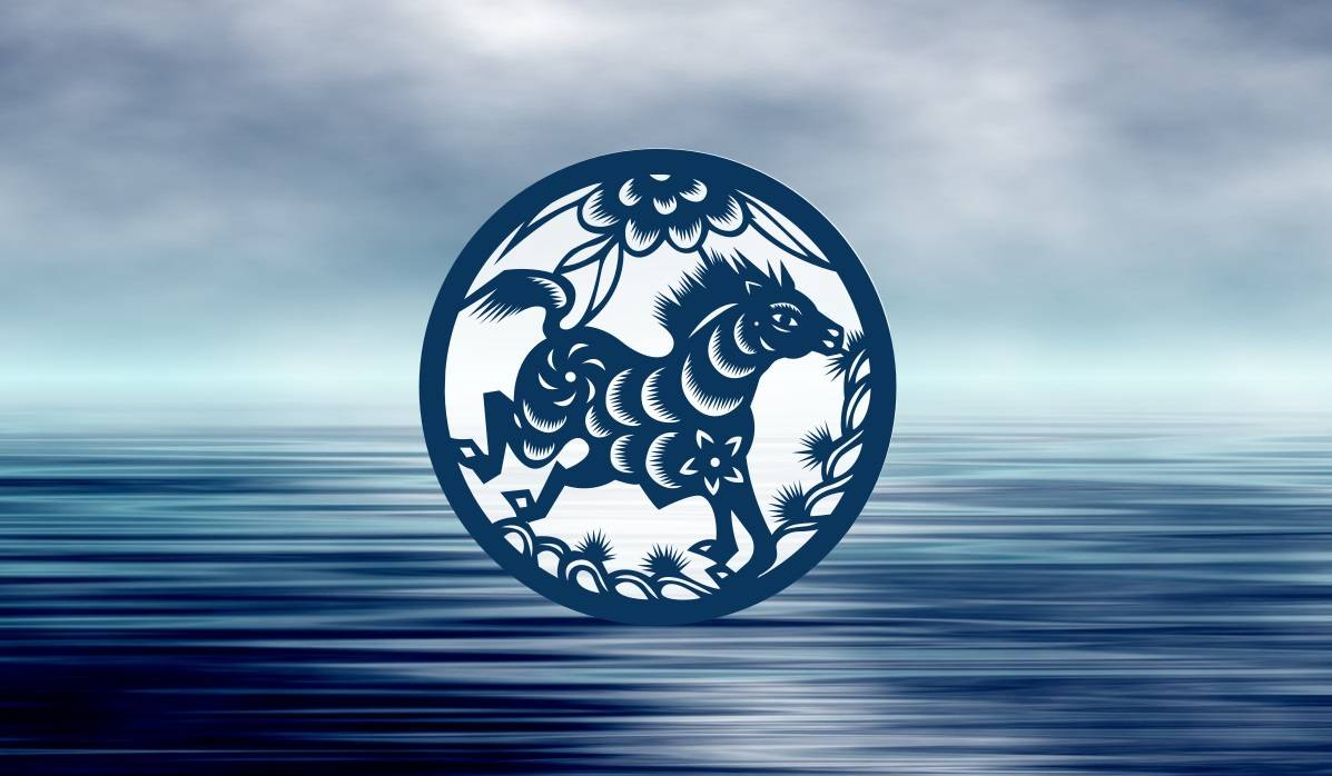 water horse chinese horoscope