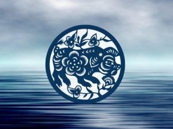 Water Pig