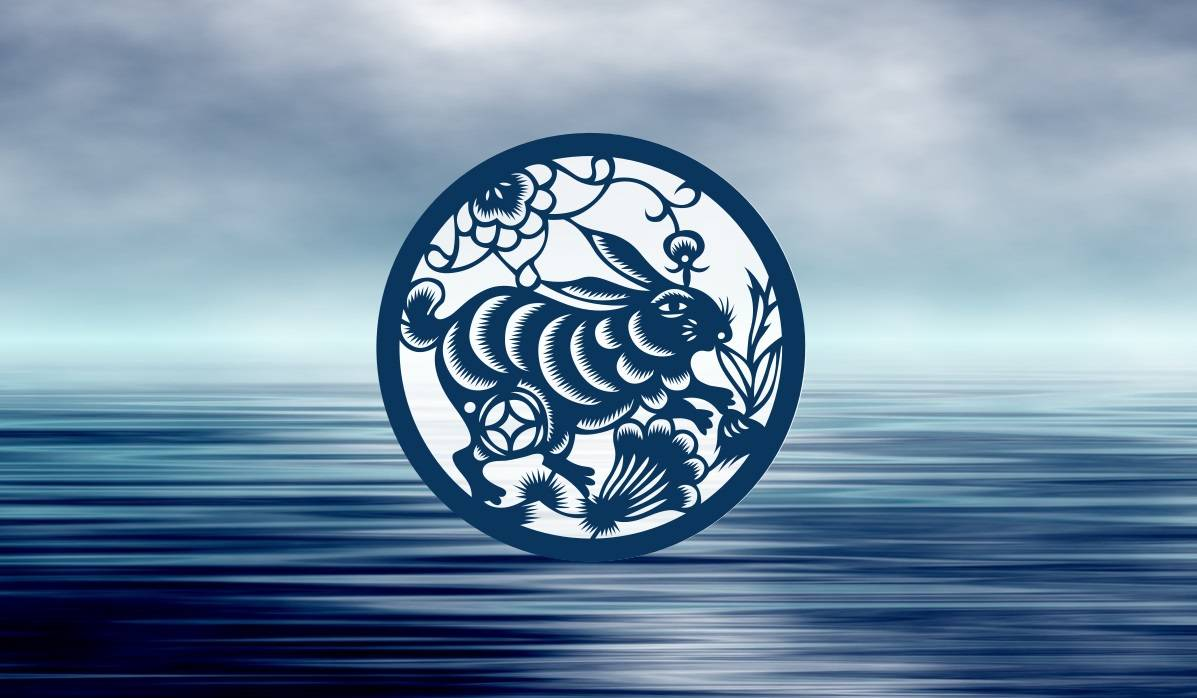 Key Traits of the Water Rabbit Chinese Zodiac Sign