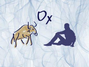 Ox Man