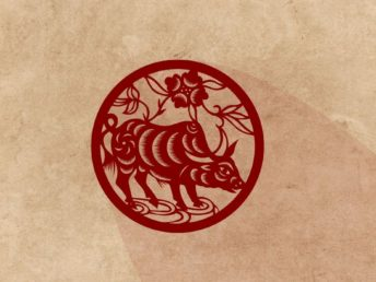 Ox Chinese Zodiac Animal