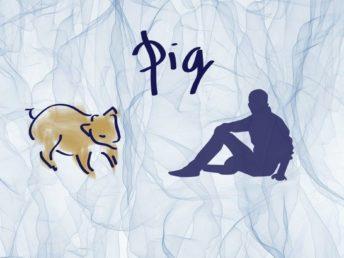 Pig Man