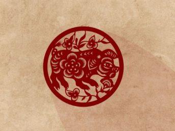 Pig Chinese Zodiac Animal