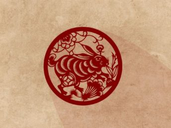 Rabbit Chinese Zodiac Animal