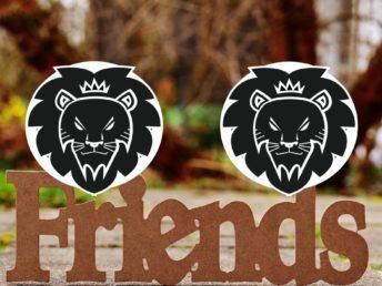 Leo and Leo Friendship