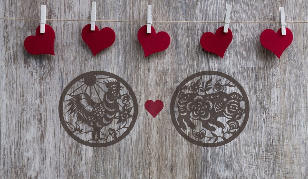Rooster and Pig Love Compatibility: A Smooth Relationship