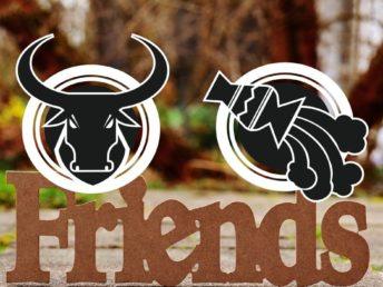 Taurus and Aquarius Friendship