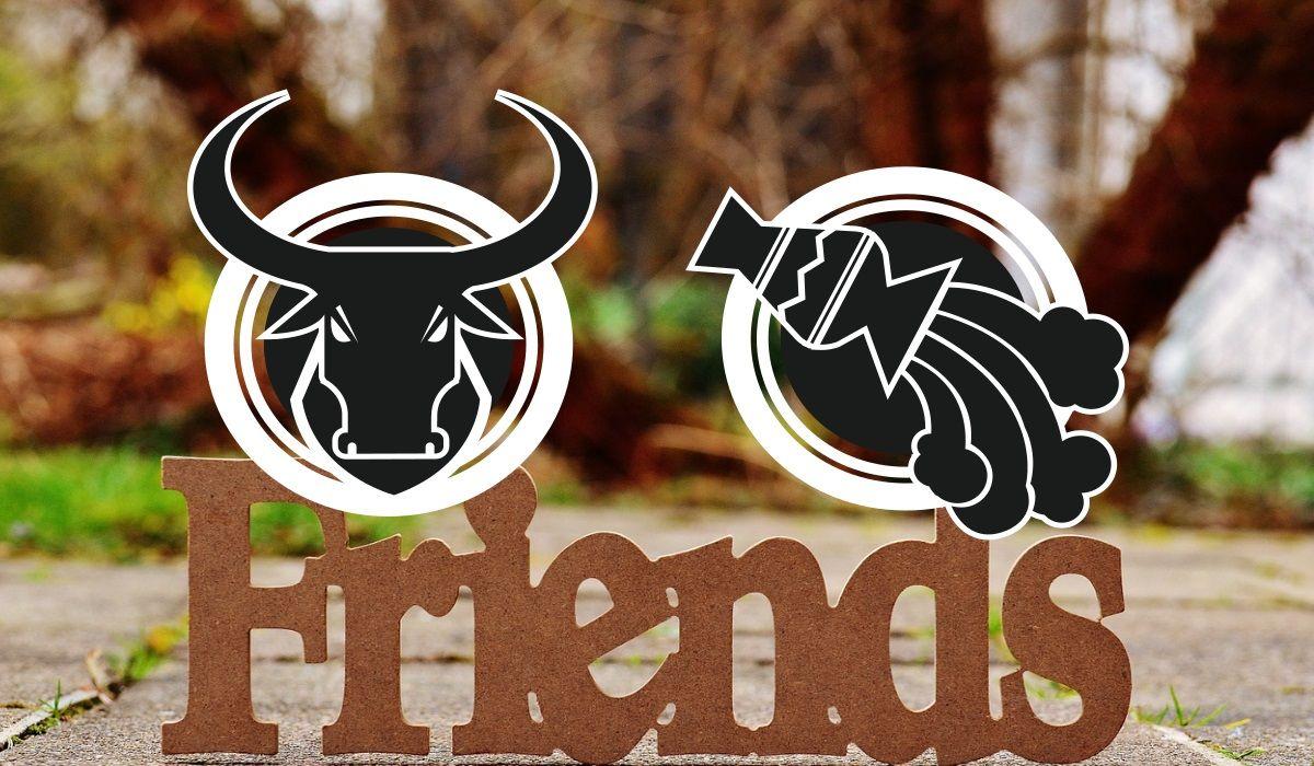 Taurus and Aquarius Friendship Compatibility