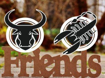 Taurus and Scorpio Friendship