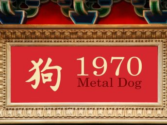 1970 Metal Dog Year