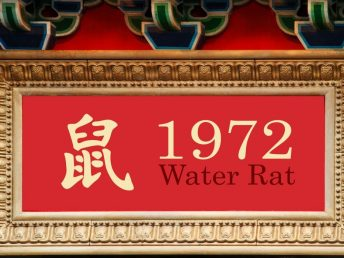 1972 Water Rat Year