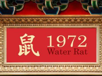 1972 Water Rat Year
