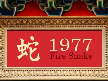 1977 Fire Snake Year