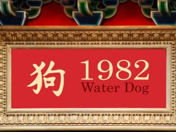 1982 Water Dog Year