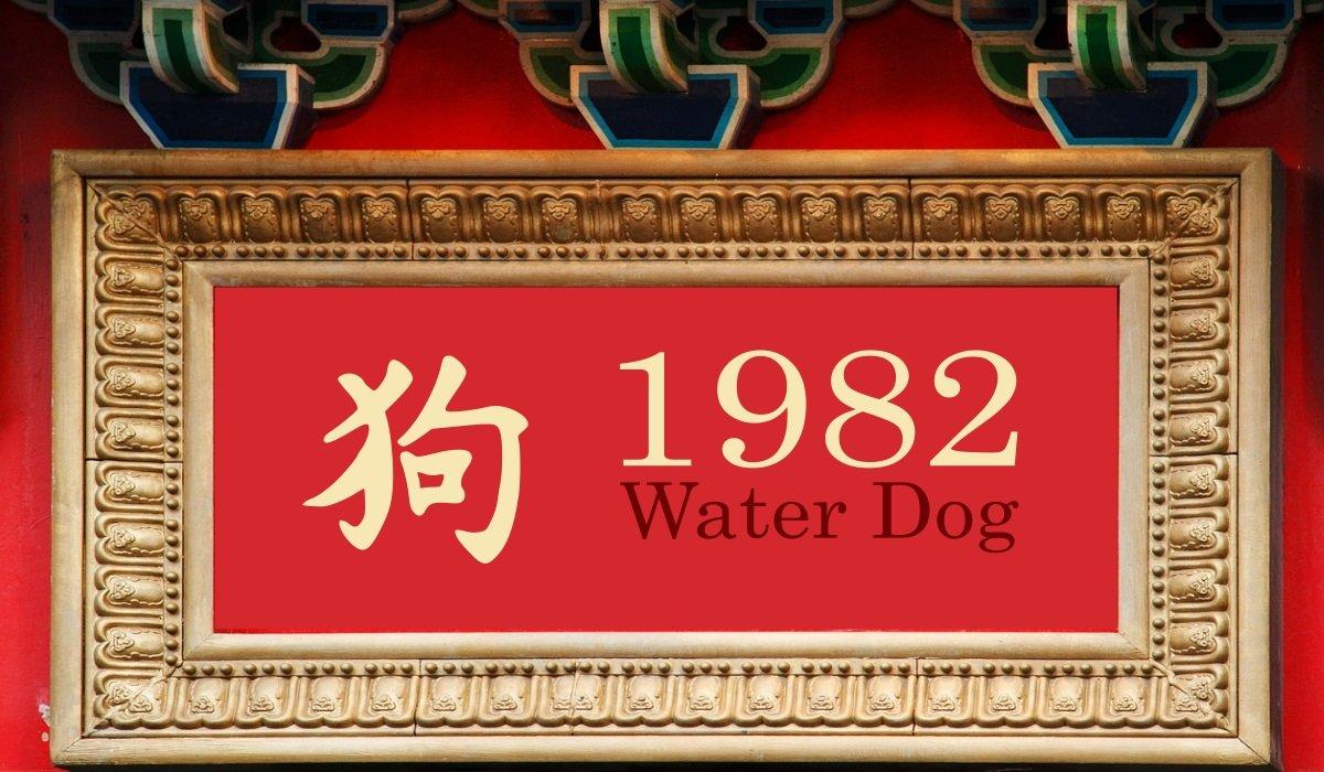 1982 Water Dog Year