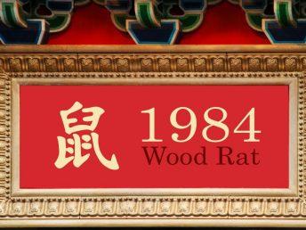 1984 Wood Rat Year