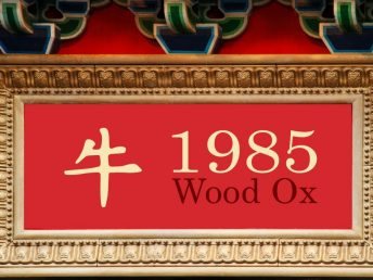 1985 Wood Ox Year