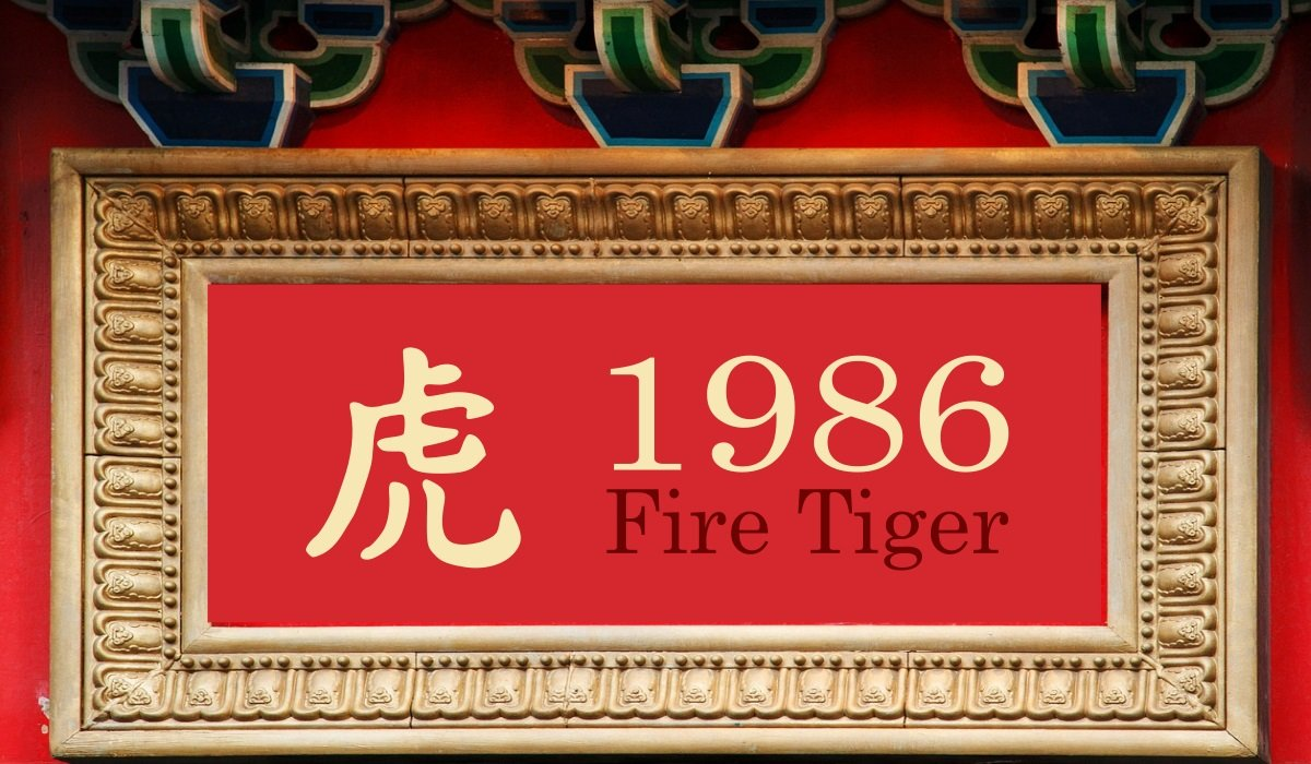 1986 Fire Tiger Year