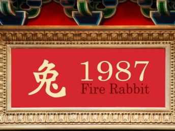 1987 Fire Rabbit Year