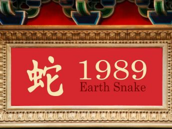 1989 Earth Snake Year