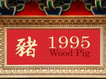 1995 Wood Pig Year