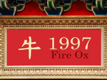 1997 Fire Ox Year