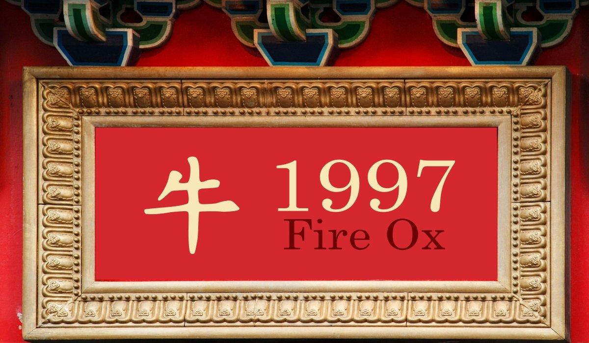 1997 Fire Ox Year