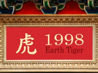1998 Earth Tiger Year
