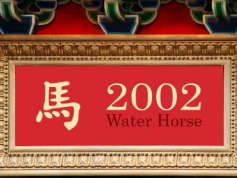2002 Water Horse Year