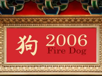 2006 Fire Dog Year