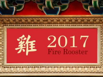 2017 Fire Rooster Year