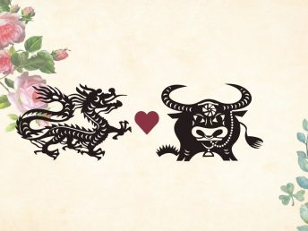 Dragon man Ox woman compatibility