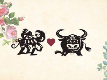 Monkey man Ox woman compatibility