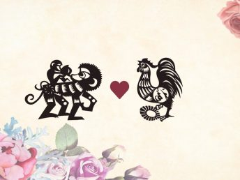 Monkey man Rooster woman compatibility