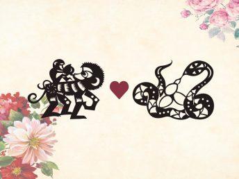 Monkey man Snake woman compatibility