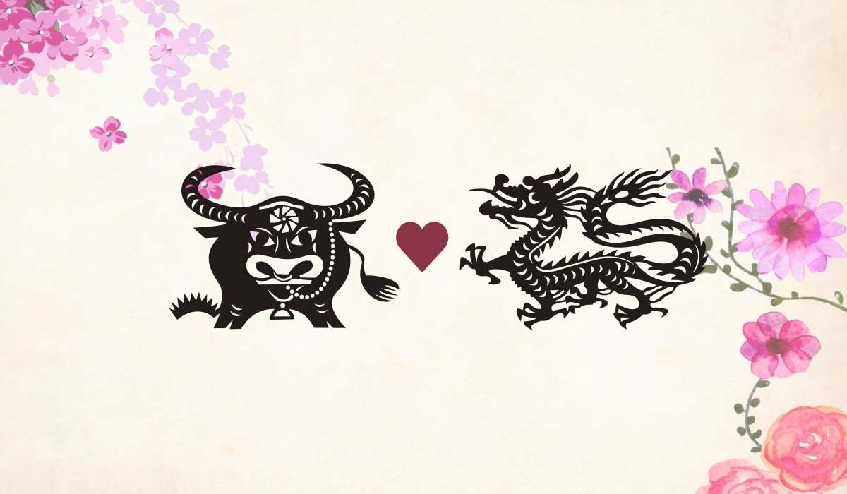 Ox man Dragon woman compatibility