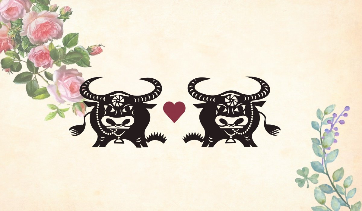 Ox man Ox woman compatibility