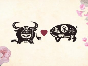 Ox man Pig woman compatibility
