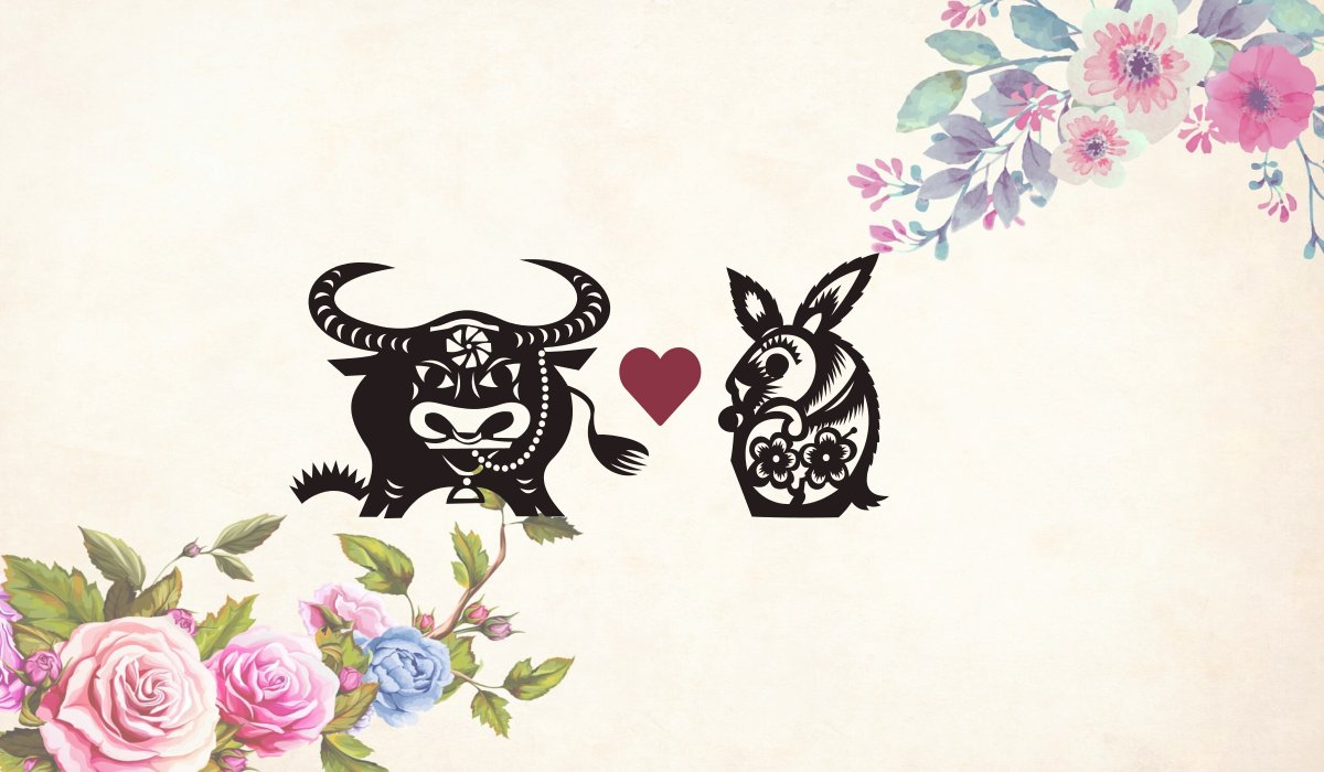 Ox man Rabbit woman compatibility