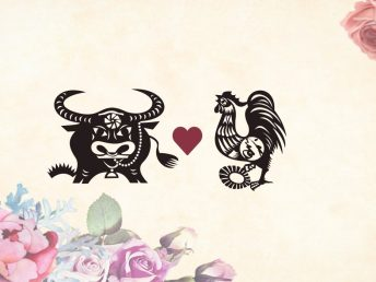 Ox man Rooster woman compatibility