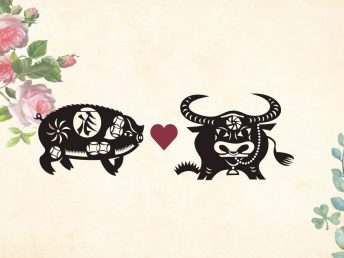 Pig man Ox woman compatibility