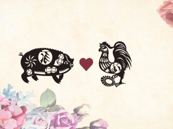 Pig man Rooster woman compatibility