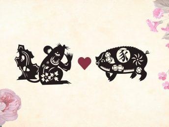 Rat man Pig woman compatibility