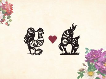 Rooster man Goat woman compatibility