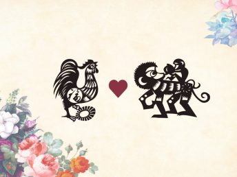 Rooster man Monkey woman compatibility