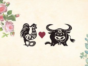 Rooster man Ox woman compatibility